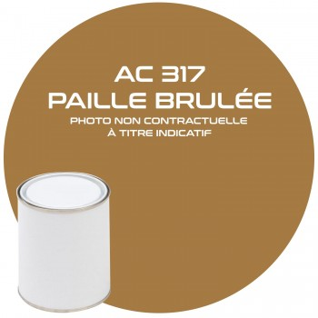 PEINTURE AC 317 PAILLE BRULEE ANNEE 70  1 KG
