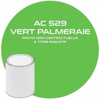 PEINTURE AC 529 VERT PALMERAIE ANNEE 74  1KG