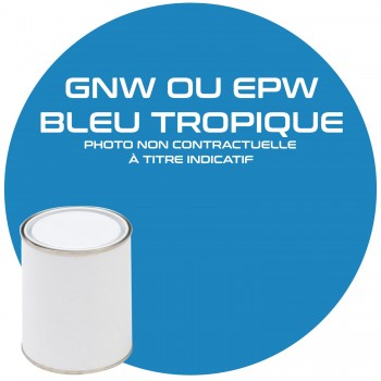 PEINTURE GNW OU EPW  BLEU TROPIQUES ANNEE 84.85  1KG