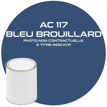 PEINUTRE AC 117 BLEU BROUILLARD ANNEE 66  1KG