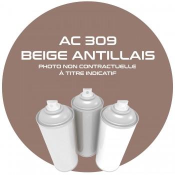 AEROSOL BEIGE ANTILLAIS AC 309 ANNEE 63 . 400 ML